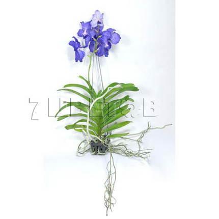 Ванда Синяя (подвесная) H60