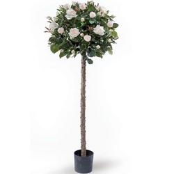 Роза Штамбовая микс D21 H150