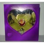 Орхидея в синей коробочке (до 99 шт.)