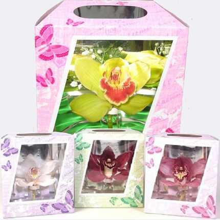 Орхидея в коробке с бабочками